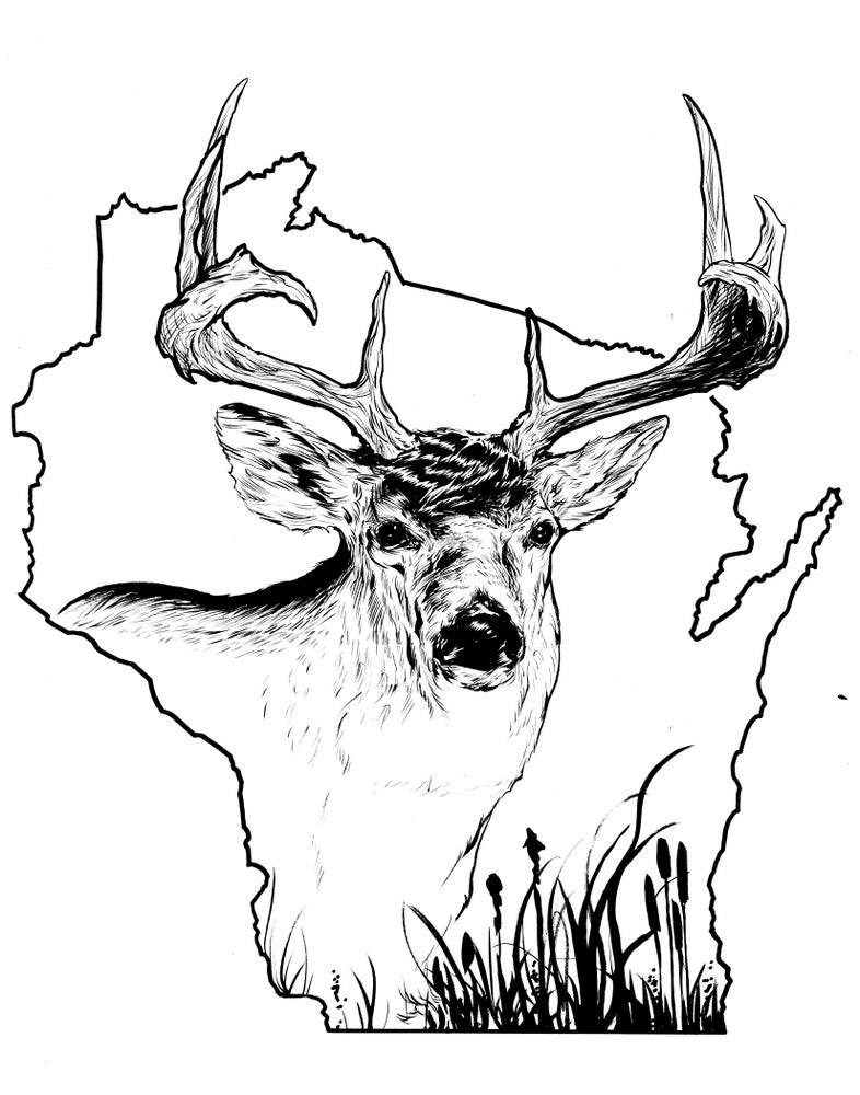 Image of wisconsin whitetail inked piece