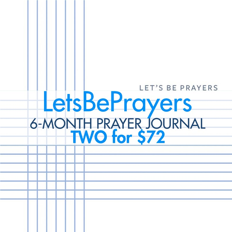 Image of TWO 6-month LBP journals