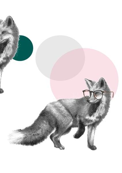 Image of FOX EYES