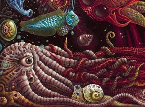 """Image of CRUSTACEAPODS - 23 X 23"""" Special Signed & Numbered Limited Edition of 50"""