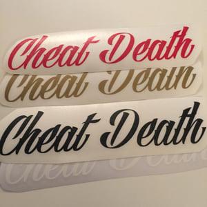 Image of Cheat Death Swingarm Decal