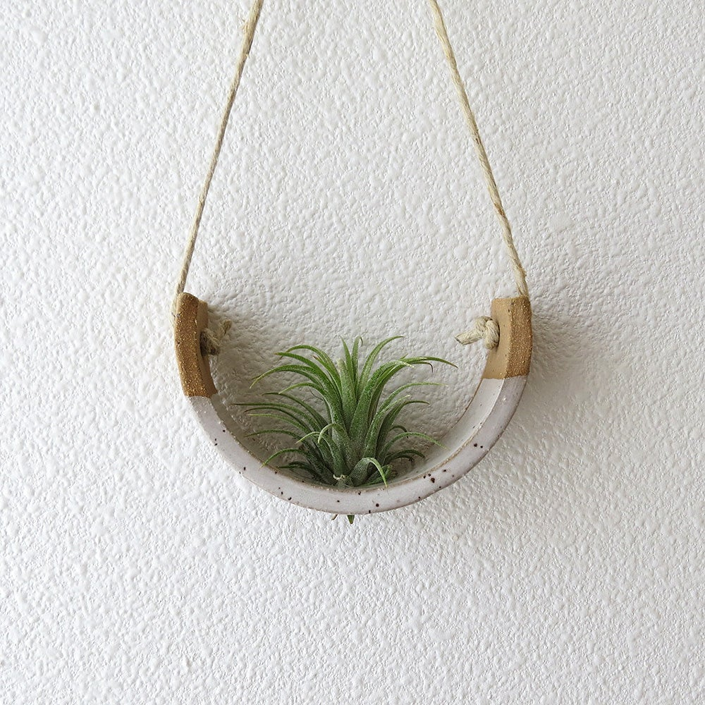 Image of SMALL SPECKLE BUFF HANGING AIR PLANT CRADLE DIPPED IN GLOSS WHITE GLAZE