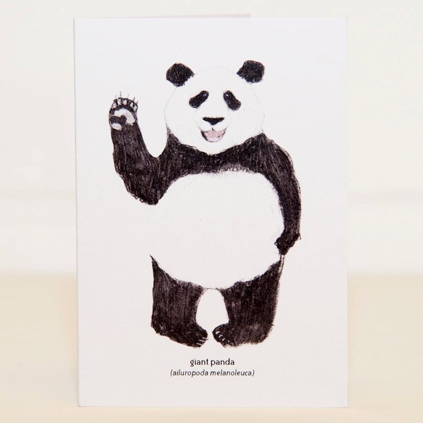 Image of Panda Mini Card