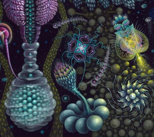 "Image of MICROVERSE II - 23 X 23"" Signed & Numbered Limited Edition of 50"