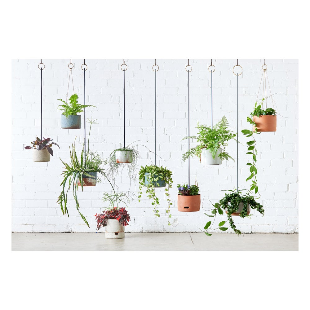Image of Leaf & Thread X Severn Smith Steel Hanging Planter
