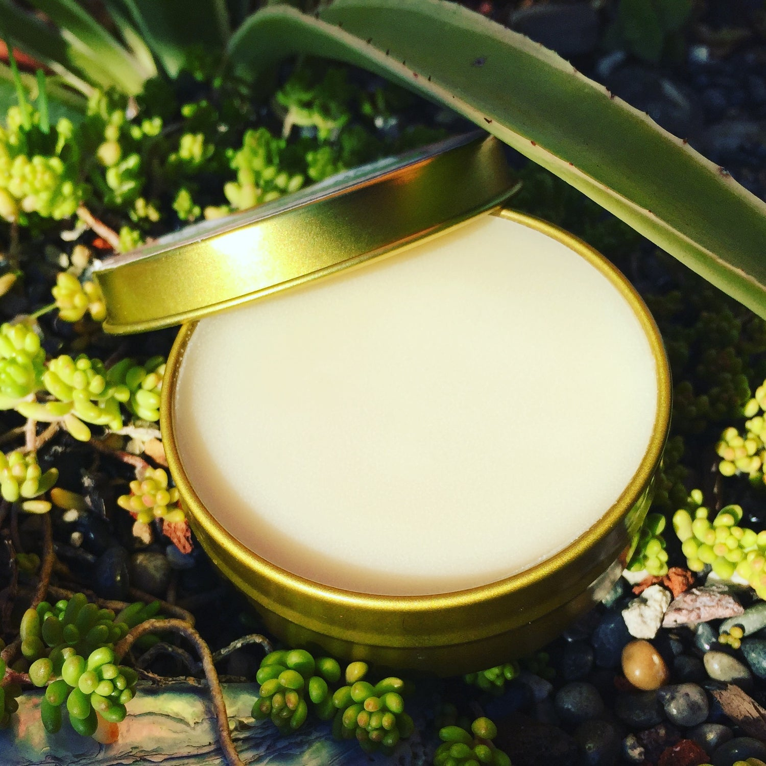 Image of Shea Butter Herbal Salve
