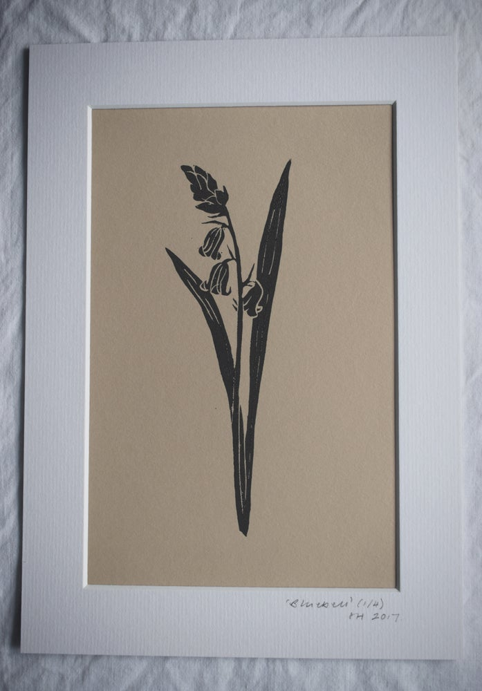 Image of Lino print: Bluebell