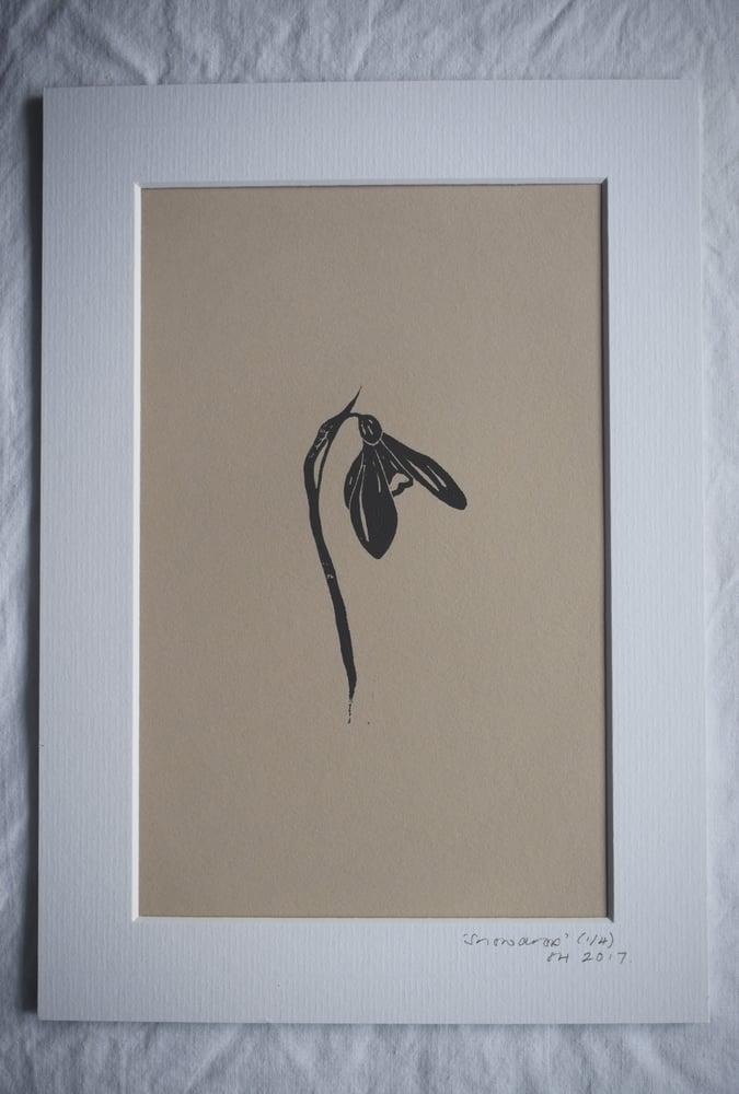 Image of Lino print: Snowdrop