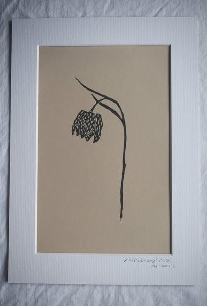 Image of Lino print: Fritillary