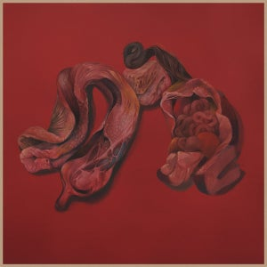 Image of Narcosatanicos ‎– Body Cults - Vinyl, LP, Album