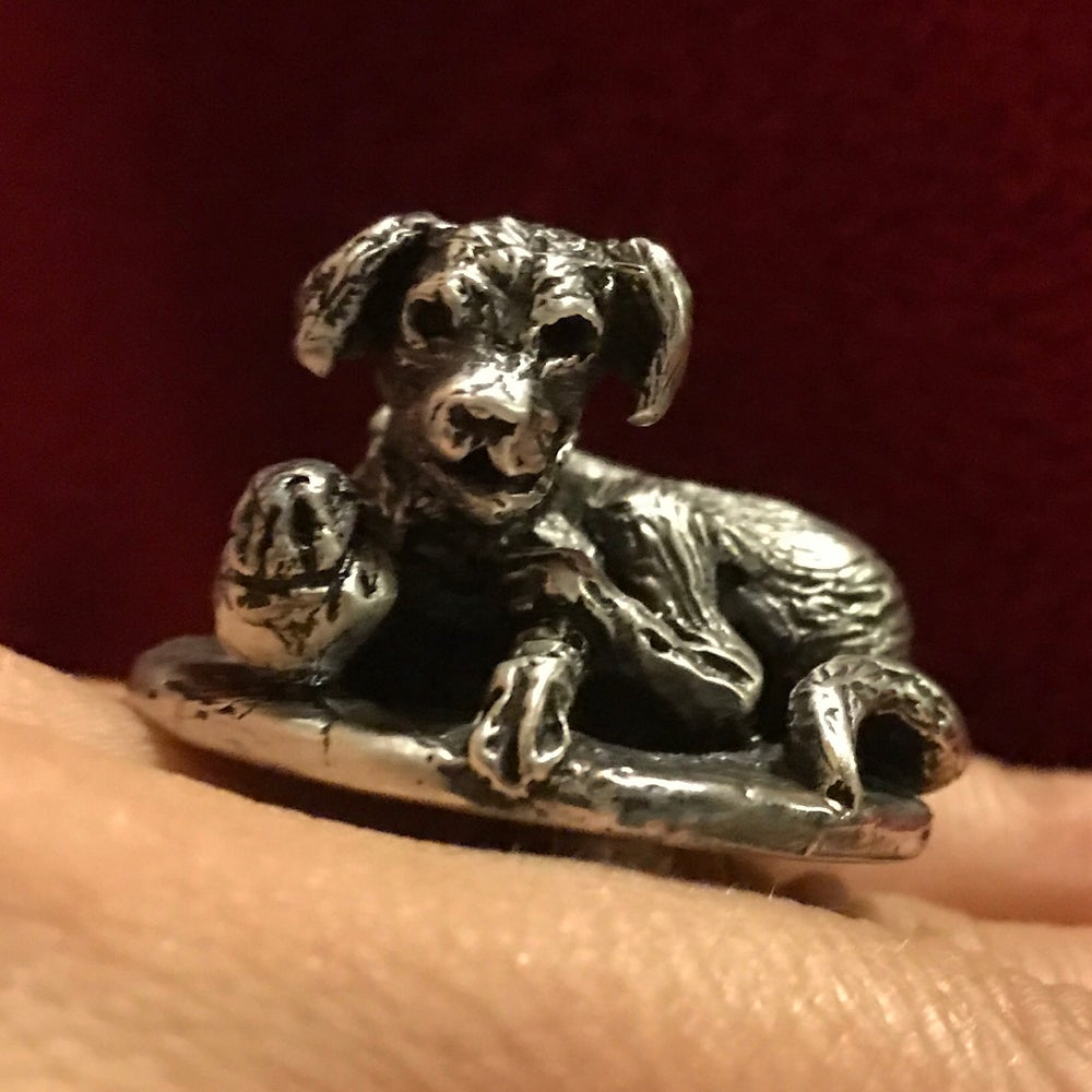 Image of Dog with a ball ring