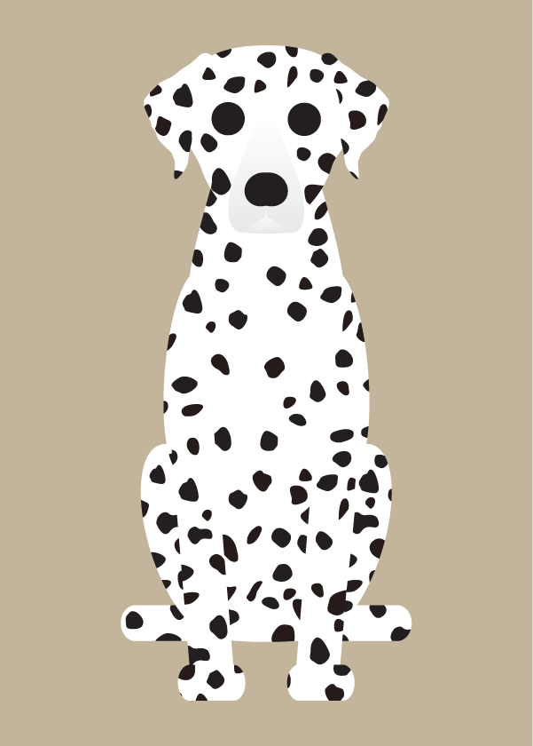 Image of Dalmation, Doberman, Miniature Pinscher Collection