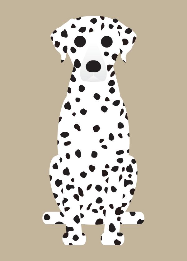 Dalmation, Doberman, Miniature Pinscher Collection