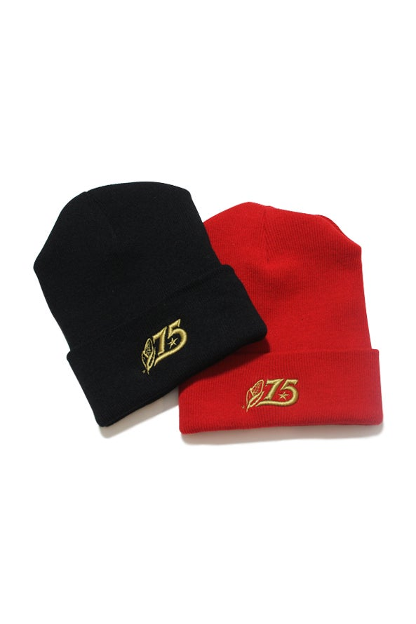 Image of 75 Beanie