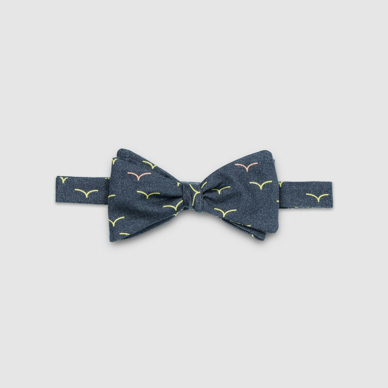 Image of VOLTAIRE – the bow tie