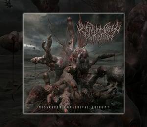 Image of Misshapen Congenital Entropy CD