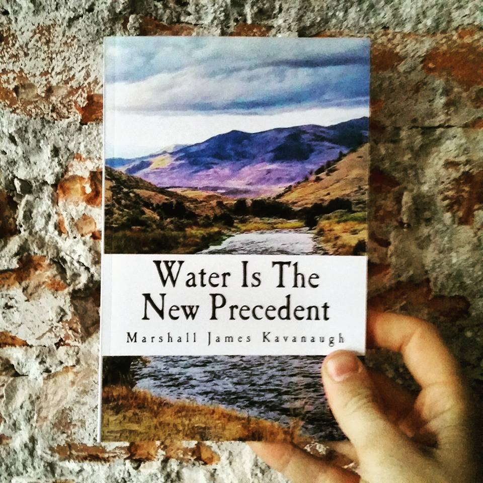 Image of Water Is The New Precedent, essay collection (2017)
