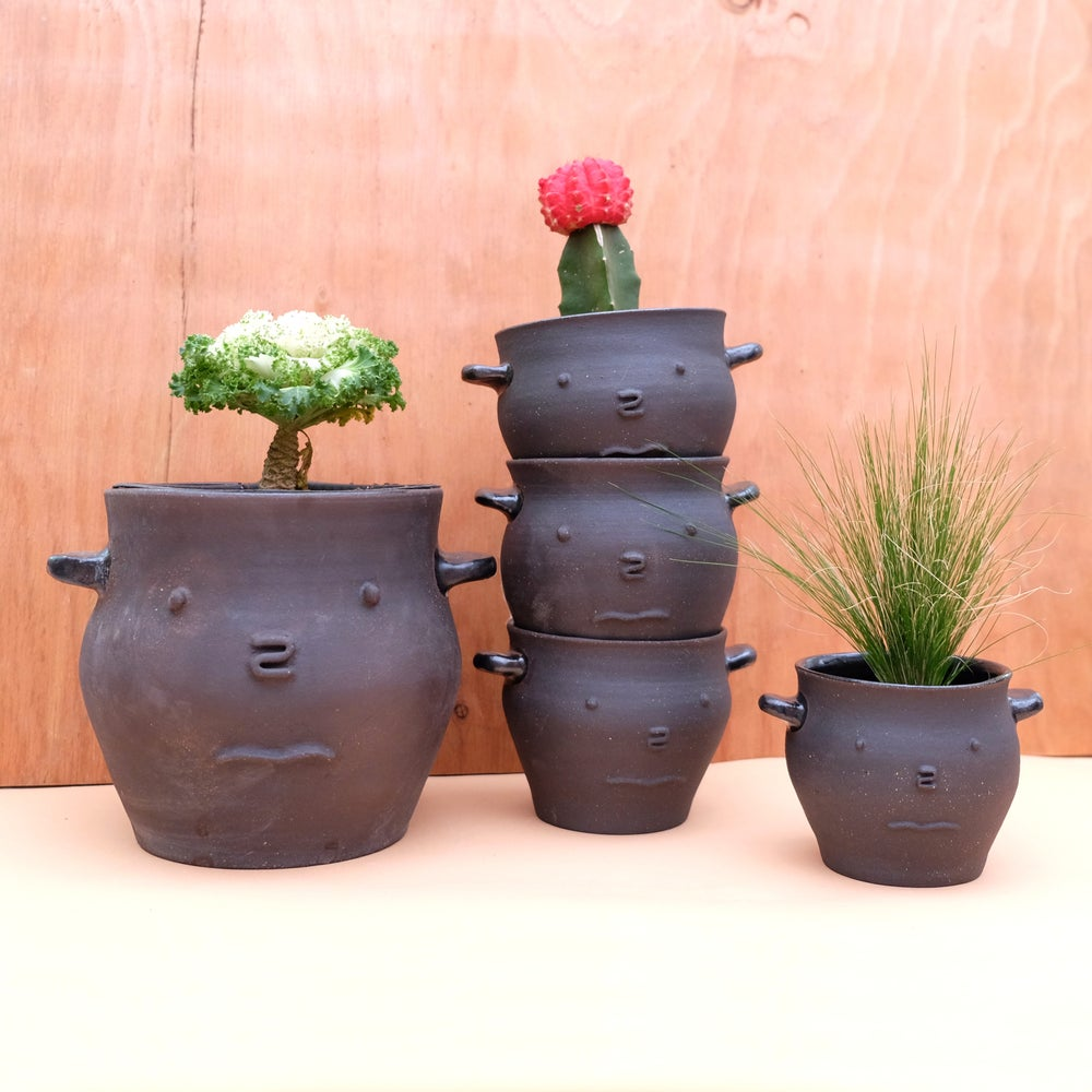 Image of Honey Pot