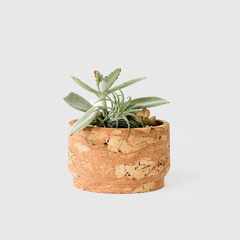 Image of Modern Pink Cork Planter 7""