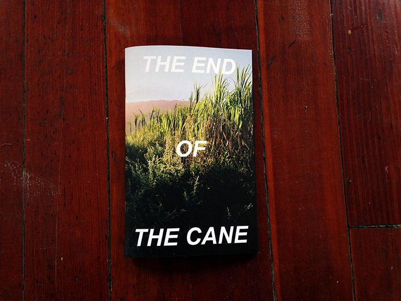 Image of The End of the Cane