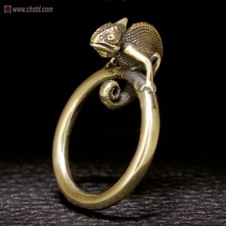 Image of Chameleon Ring