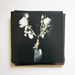 """Image of QUAL - Cupio Dissolvi 12"""" EP"""