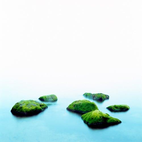 Image of Sea Fret