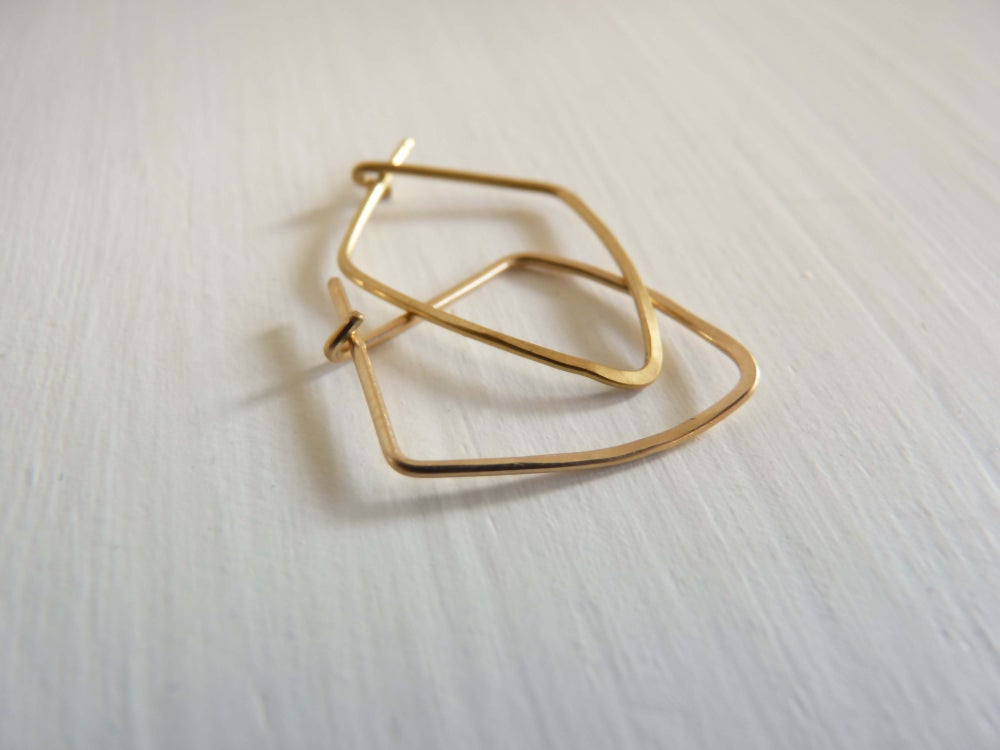 Image of Vector earrings