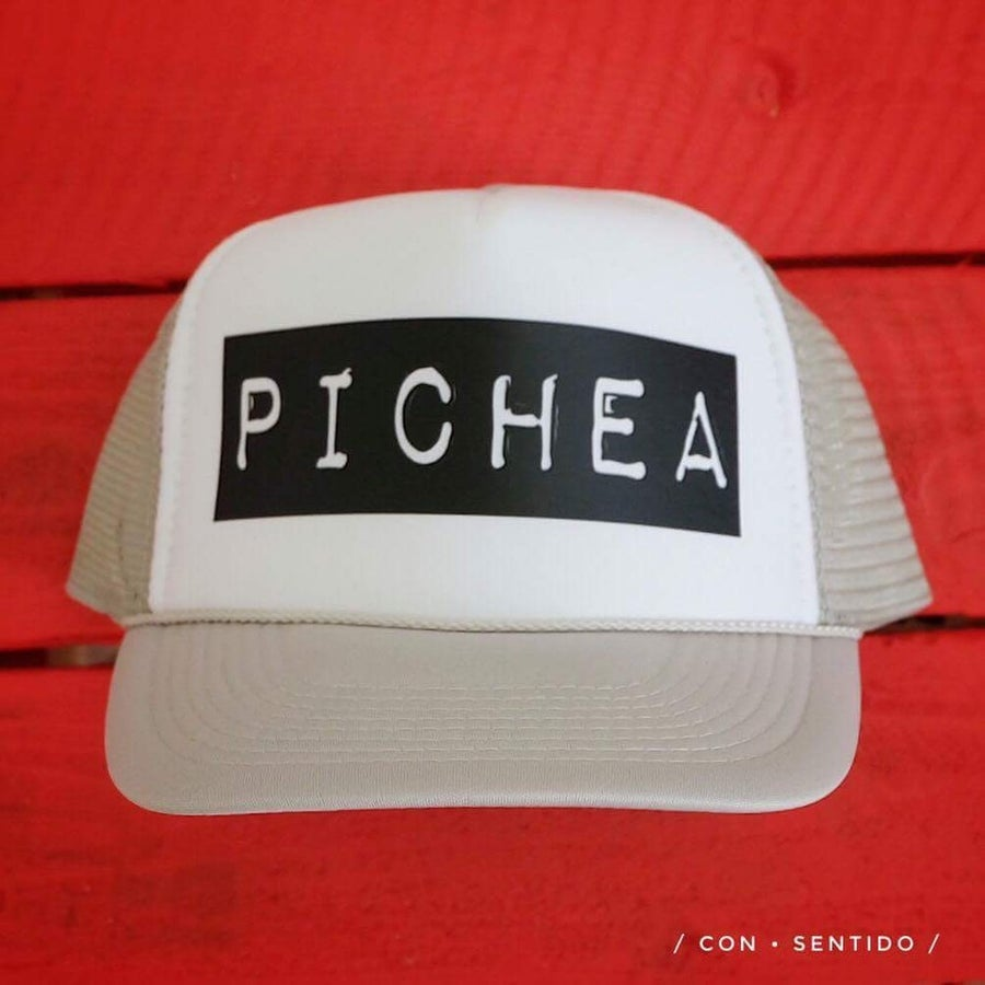 Image of Pichea Trucker Hat - Grey/White & Black