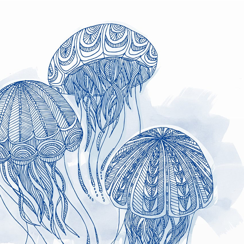 Image of Print: Jellyfishes