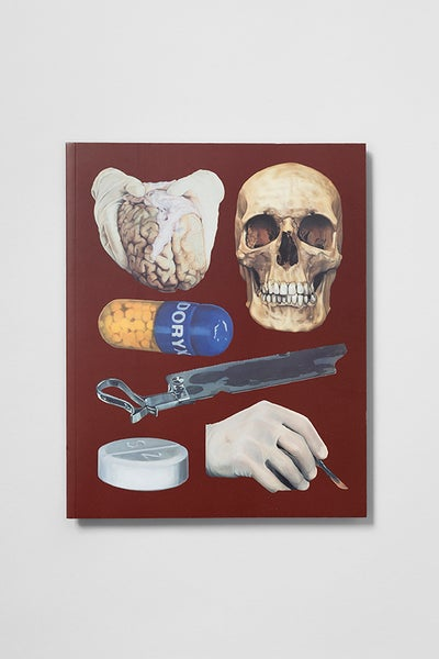 Image of Damien Hirst - The Elusive Truth : New Paintings