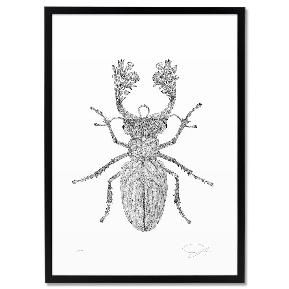 Image of Large Print: Flowery Stag Beetle
