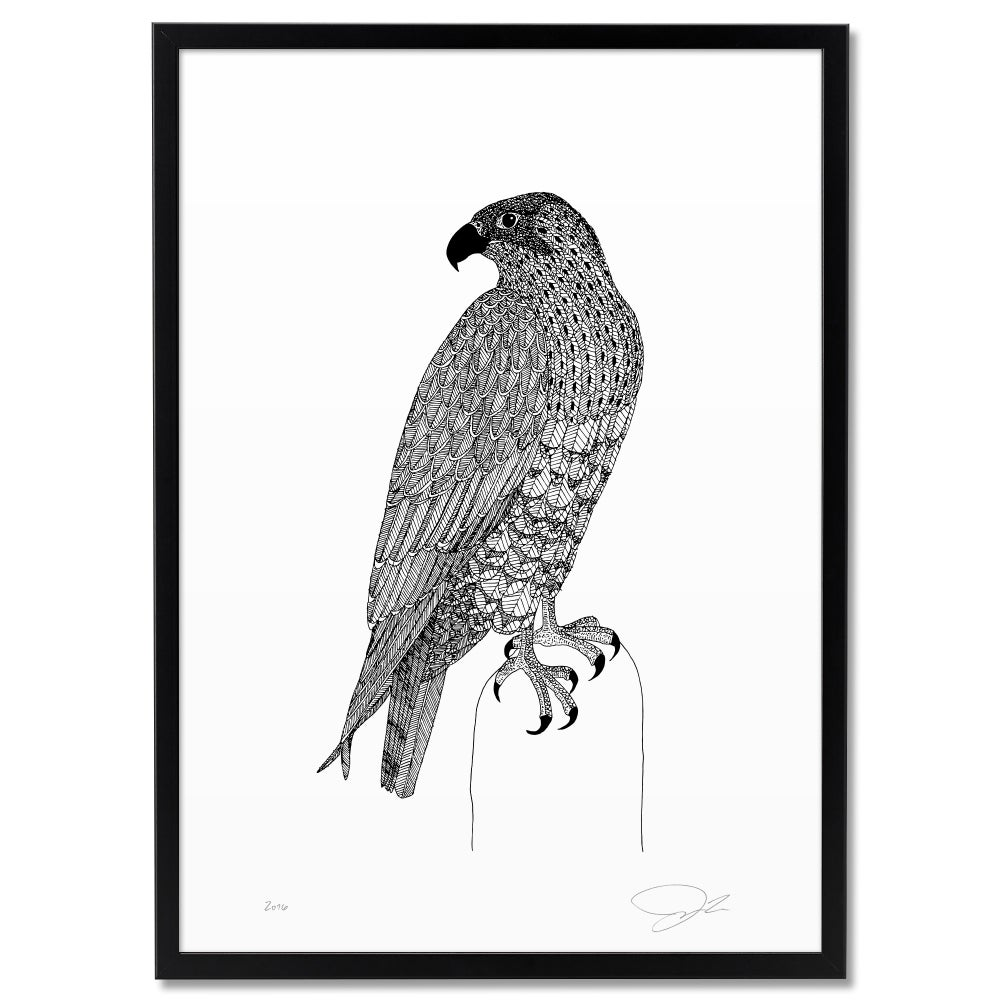 Image of Print: Falcon II
