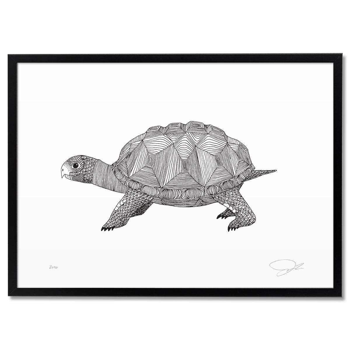 Image of Print: Tortoise