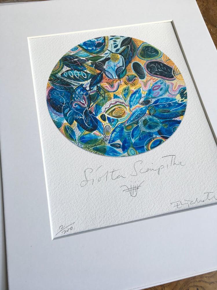 Image of Síolta Scaipthe / Scattering seeds