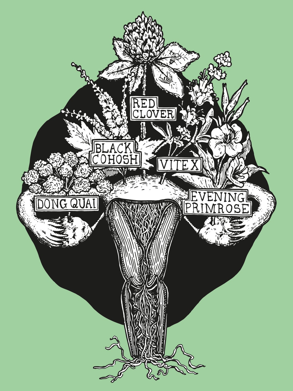 Image of HERBAL WOMB  [giclée print]