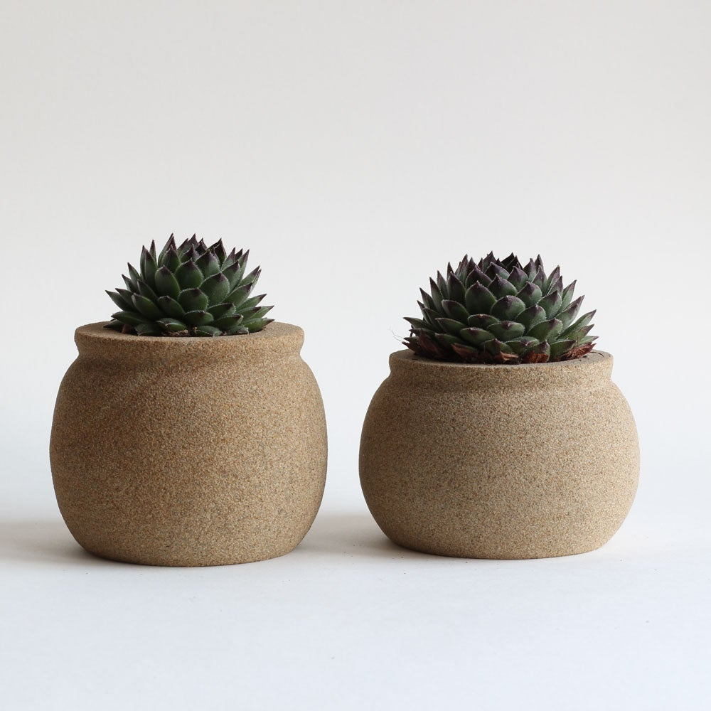 Image of Succulent Planter