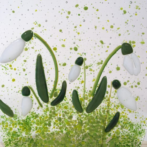 Image of Snowdrops