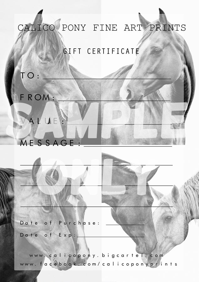 Image of CALICO PONY GIFT CERTIFICATE
