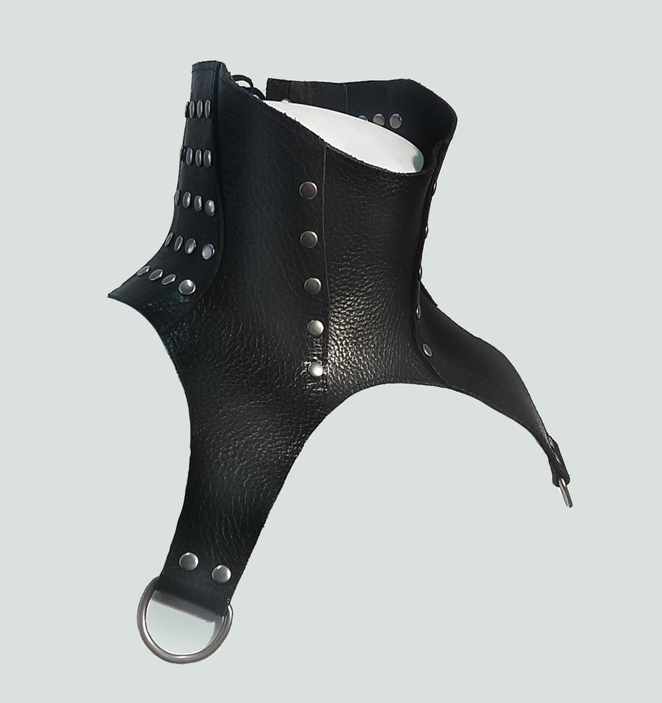 Image of LURSA posture collar with gunmetal rivets