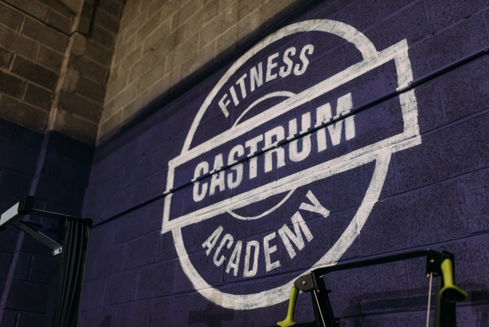 Active Iq Level 3 Certificate In Personal Training Castrum Fitness