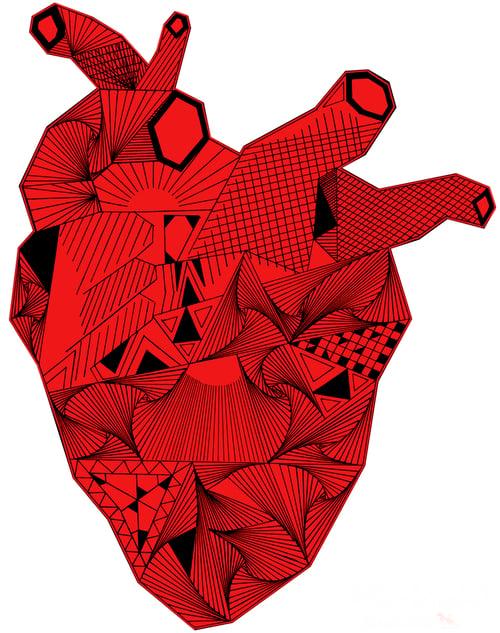 Image of Camiseta blanca CORAZON WILD AT HEART