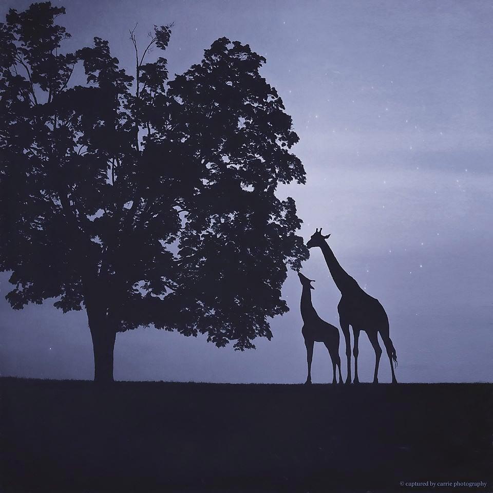 Image of Giraffe Silhouette Overlay