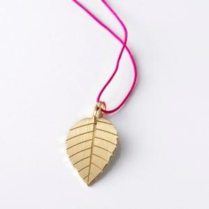 Image of little leaf_brugmansia_gelbgold
