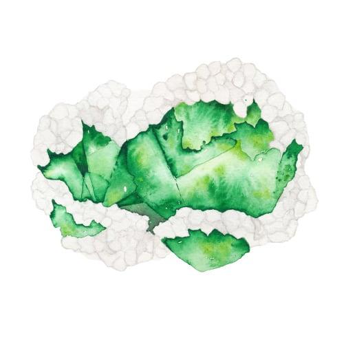 Image of Vintau Green Tourmaline Watercolor Print