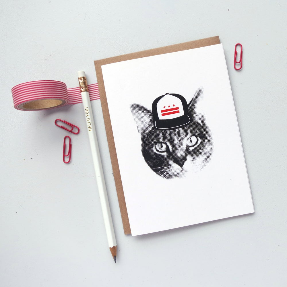 Image of gee whiskers series: DC cat