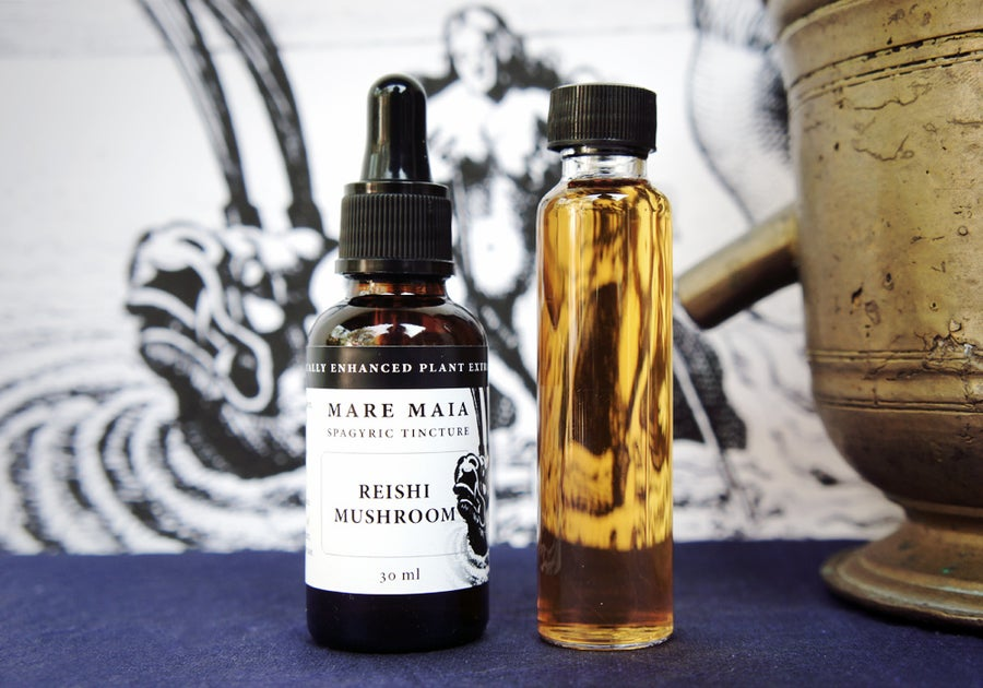 Image of REISHI MUSHROOM spagyric tincture - alchemically enhanced plant extraction