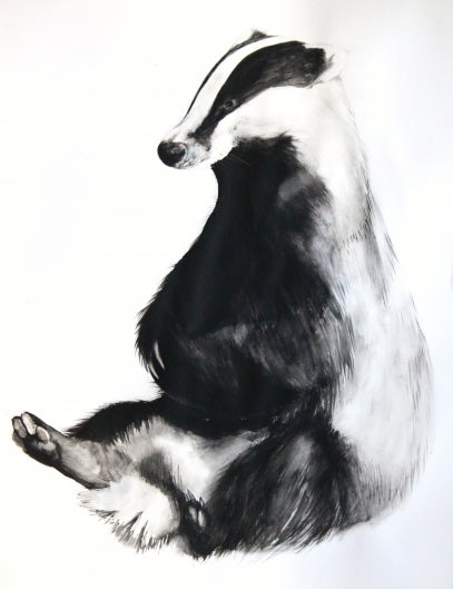 Image of Badger (British Wildlife Series).
