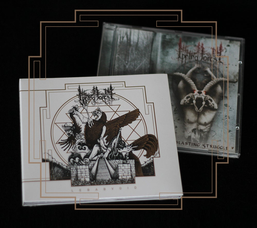 Image of Bundle Lebabvoid [Digipack] + Everblasting Struggle