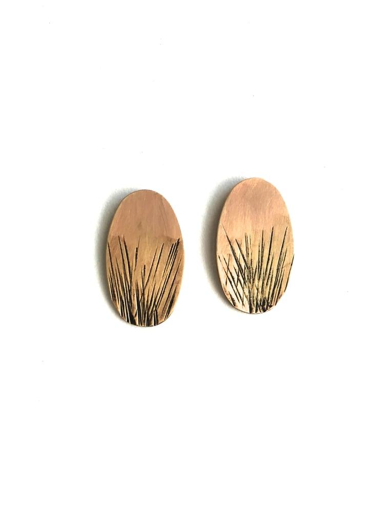 Image of Brass Stud Earrings